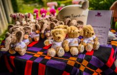 SANNI Foundation Summer BBQ 2018